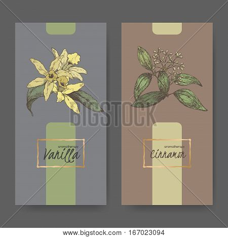 Set of two center labels with Vanilla planifolia aka Vanilla and Cinnamomum verum aka cinnamon color sketch. Aromatherapy series.