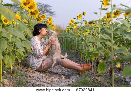 Asia Women Kissing Dog Travel At Sunflower Meadow