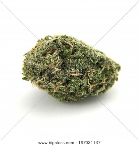 marijuana bud (flower) isolated on a white background. Stain name Doubledream
