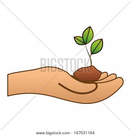 hand holding sprout eco friendly related icons image vector illustration design