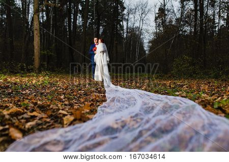 Groom and bride with very long bridal veil in the autumn forest