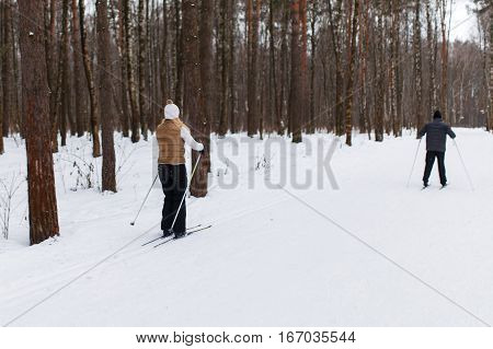 People ski in winter park in afternoon