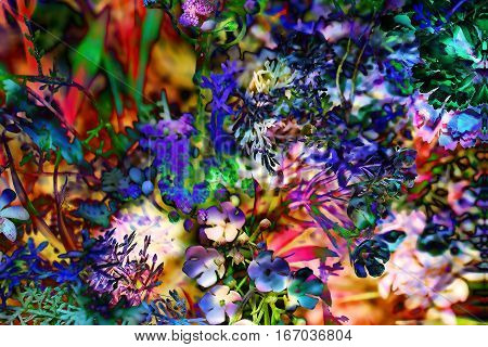 Abstract colorful design with flower. Computer art