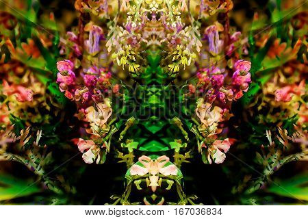 Abstract colorful design with flower. Computer graphic from photography