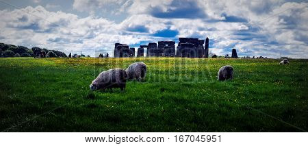 Panoramic picture of Stonehenge and meadow with sheeps on the cloudy sky background.