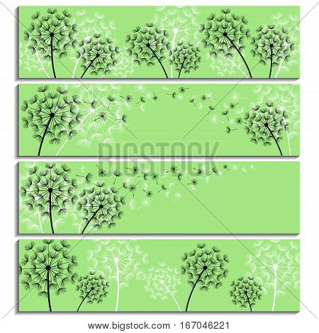 Set of horizontal green banners with black and white stylized dandelions and flying fluff. Modern floral background with summer or spring flowers. Stylish trendy wallpaper. Vector illustration
