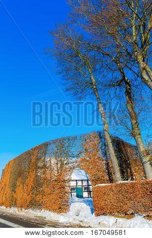 Farm House With High Hedge In The Eifel