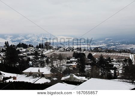 Neighborhood orchard against the hills  - winter scenic
