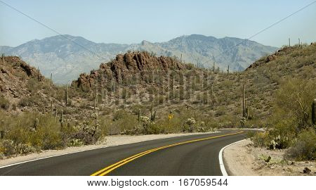 Curvy road through Sonoran Desert