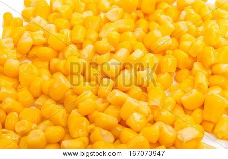Canned Corn maize close-up on white background
