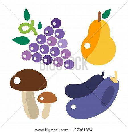 Bunches of grapes grow viticulture vector illustration. Blue nature pears, mushrooms, eggplant food isolated juicy berry. Winery harvest natural purple agriculture nutrition.