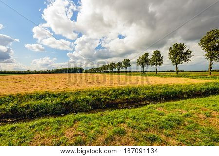 Colorful agricultural landscape in a Dutch polder with drying hay and threatening rainclouds. It was a sunny day in the summer season.