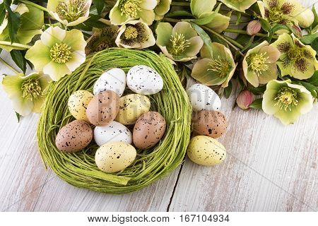 Easter nest decoration in green yellow colors