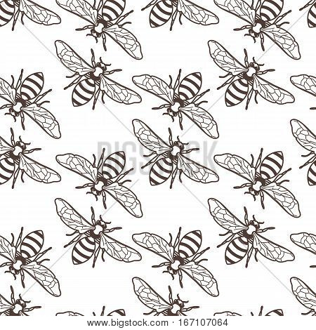 Vector seamless vintage pattern with linear bee. Organic honey background. Concept for honey package design label wrapping fashion prints.