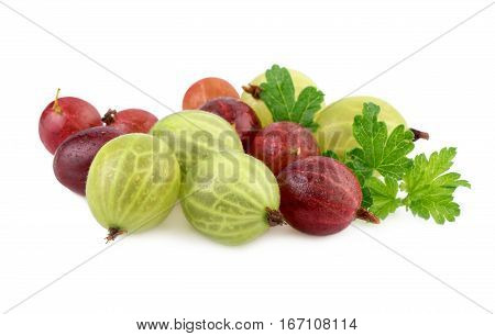 Isolated gooseberry. Green and red gooseberries isolated on white