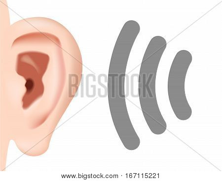 Ear Listening Hearing Audio Sound Waves vector