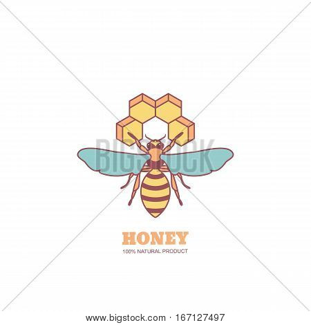 Vintage Honey Label Design Elements. Vector Logo Or Emblem With Honeybee And Honeycombs.