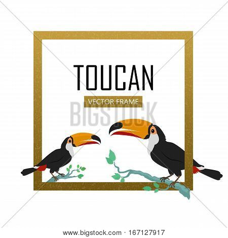 Toucan vector frame. Animals of Amazonian forests in flat design. Fauna of South America. Wild life in tropics concept for posters, childrens books illustrating. Toucans on branch isolated on white.