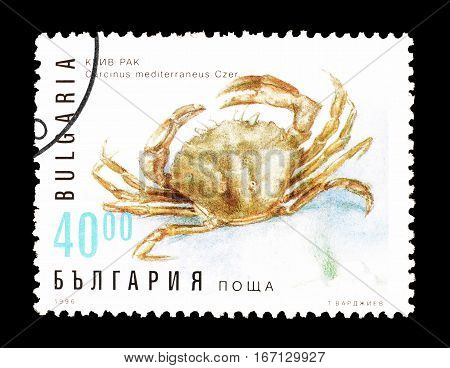 BULGARIA - CIRCA 1996 : Cancelled postage stamp printed by Bulgaria, that shows Green crab.