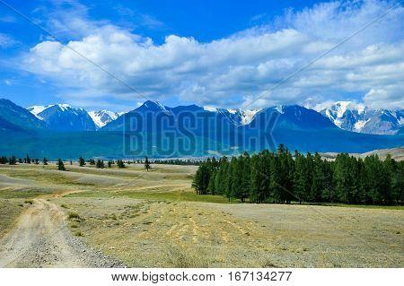 mountains, fields, trees, mountains, okoli, forest, foothills, snowy mountains, Altai mountains