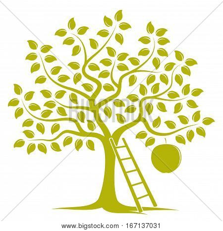 vector apple tree with one big apple and ladder isolated on white background