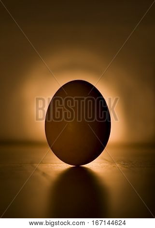 the standing egg in the backlight in the dark