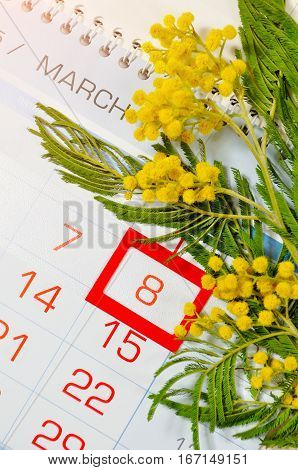 8 March postcard - mimosa flowers on the calendar with framed 8 March date. 8 March is international women day
