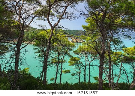 Apulia coast: San Felice Bay is located in the Gargano National Park.The little rock arch (called Architello or San Felice, spectacular symbol of Vieste) is visible between the pine forest.ITALY.