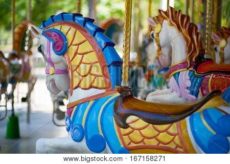 lovely horses in roundabout amusement children park