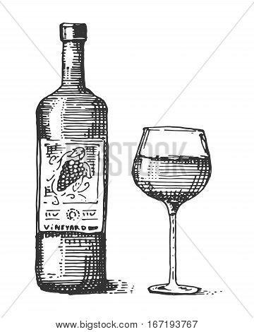 Bottles and glass of wine engraved illustration hand drawn