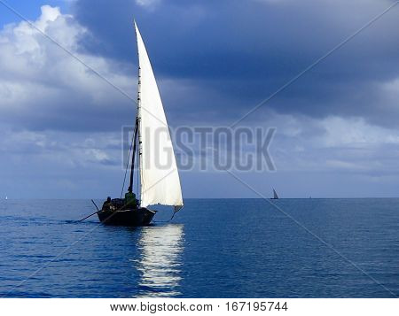 Traditional Arab Dhow- White Sail on a Calm Blue Sea