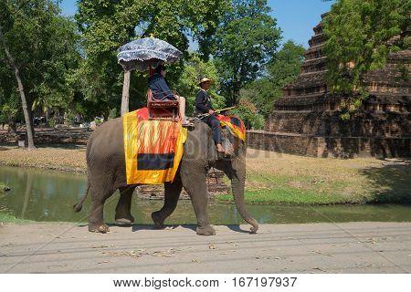 AYUTTHAYA, THAILAND - JANUARY 01, 2017: Walk on the elephant in the historical Park of Ayutthaya