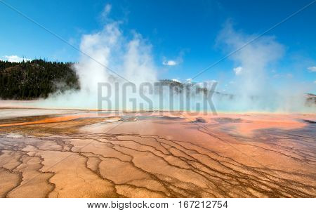 Midway Geyser Basin At Grand Prismatic Spring In Yellowstone National Park In Wyoming Usa