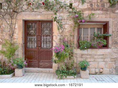 Blumen an der Wand