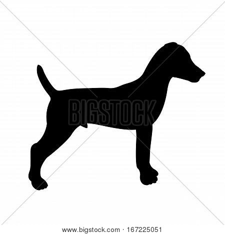 Terrier vector illustration style Flat  black silhouette