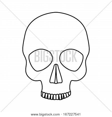 Icon human skull isolated on a white background