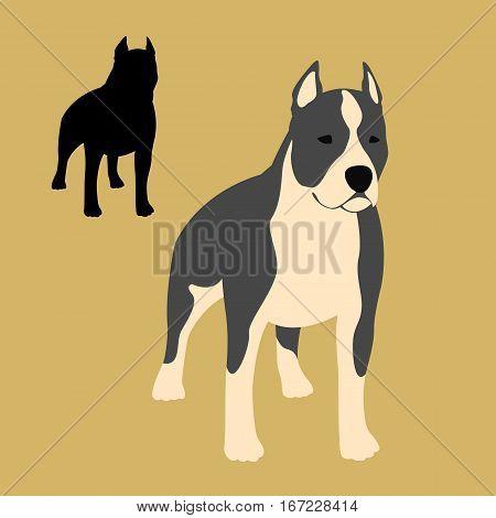 american staffordshire terrier vector illustration style Flat set