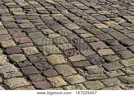The area is paved with rectangular stone. Full frame