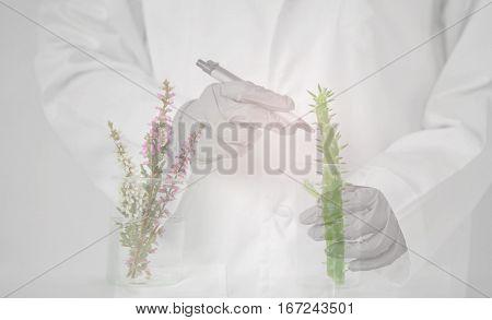 beaker flower plant scientist or researcher in uniform pen and glove background