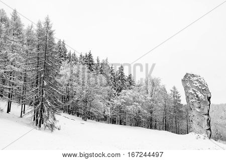Winter day in Ojcow National Park (Poland)