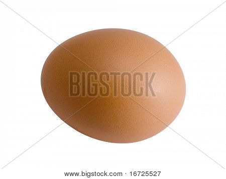 Egg on a white background (isolated).