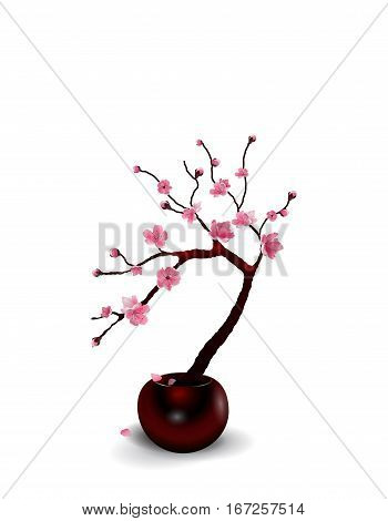 Ikebana. Composition. Figure Sakura flower. Isolated on white background with shadow. vector illustration