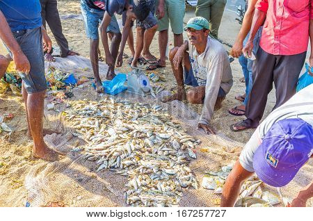 The Fishing Market Of Galle