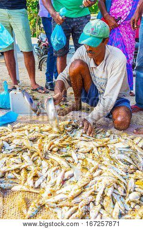 The Fish Dealer