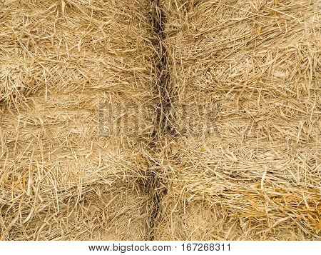 two big yellow straw background in farm
