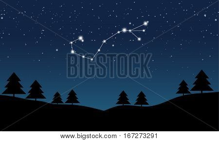 Vector illustration of Scorpio constellation on the background of starry sky and night landscape