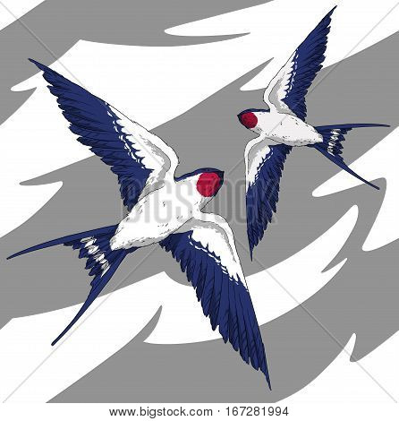 seamless pattern fly swallow bird in the sky realistic wings