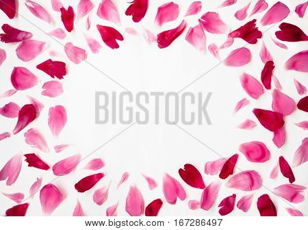 Pink and Red petals of peony flowers lying on white background With Copy Space in the middle of the frame. Beautiful Blank Card for invitation congratulation. Flat lay.