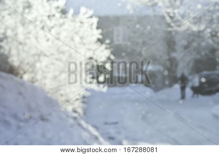 Winter blurred background of trees and snow.