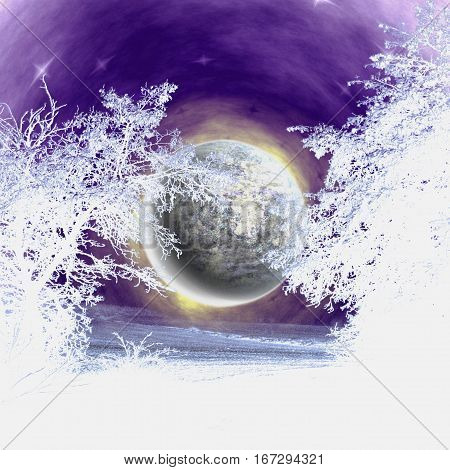 Night winter landscape with snowy trees and moon. Blue and white silhouettes of trees and night sky with moon and stars